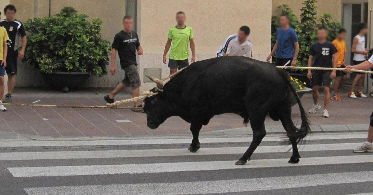 Badalona banned from now on the Correbous