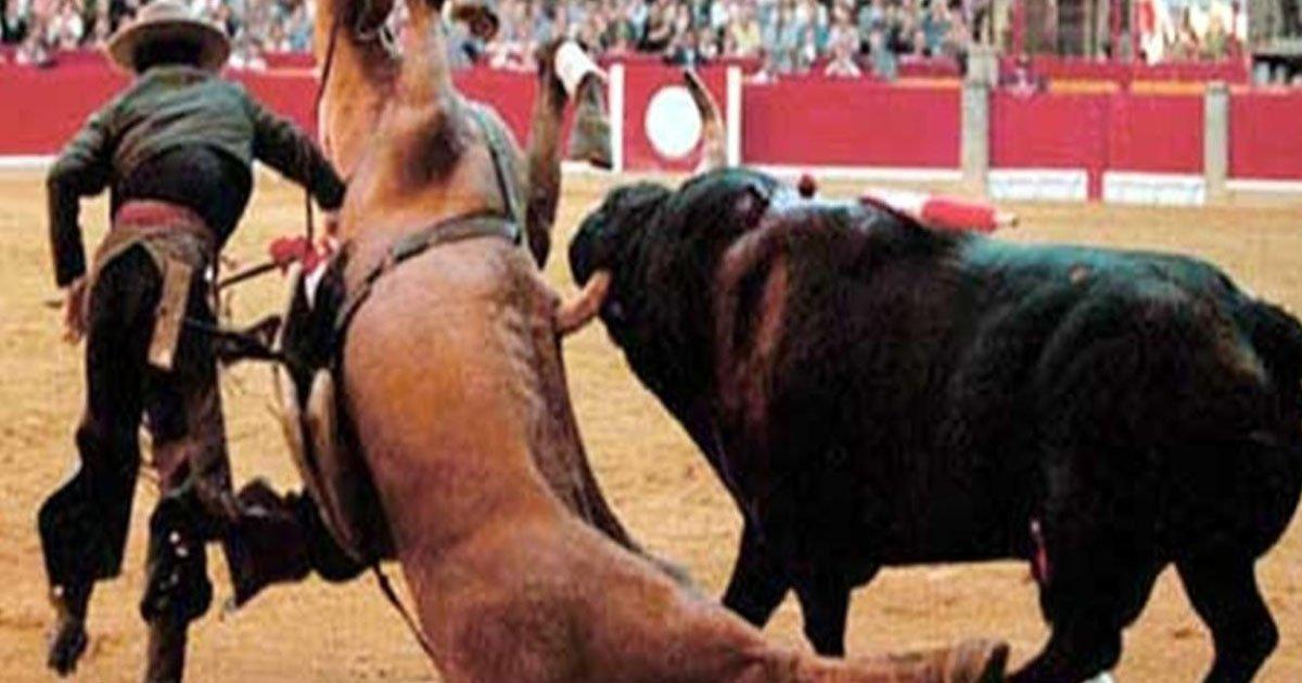 The European Parliament approved the elimination of subsidies to bullfighting. Victory!