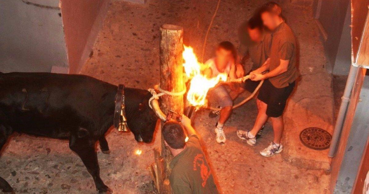 Detengamos las 'bous al carrer' valencianas!