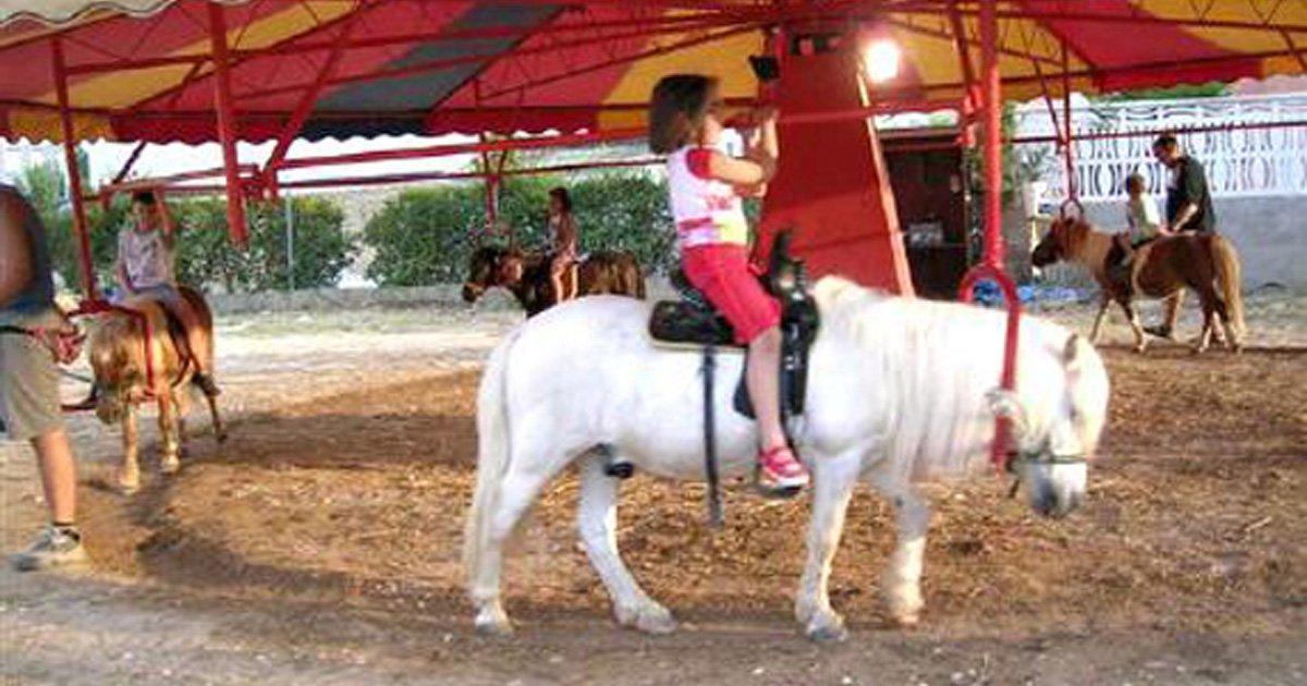 Interdisez Activités impliquant l'utilisation d'animaux. Exemple: Carrousel de poneys pour les enfants