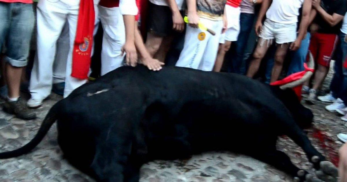 The City of Coria will be fined up to 30,000 euros for allowing a neighbor to kill 'Guapetón'