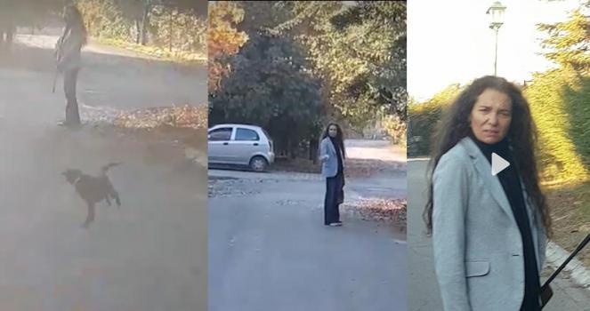 Cárcel a esta mujer por dispararle a este perrito!