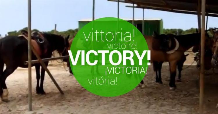 Victoria confirmada! Salvemos a los caballos del maltrato