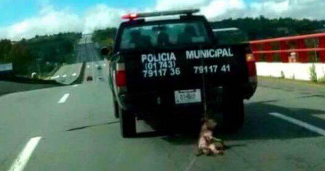Denuncia, castigo y justicia al perro atado en Patrulla de Policía Municipal de Zempoala, Hidalgo, México