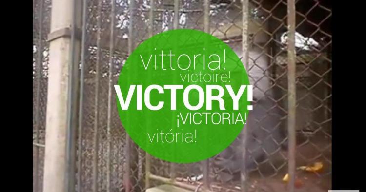 Rocha closed the Zoo!