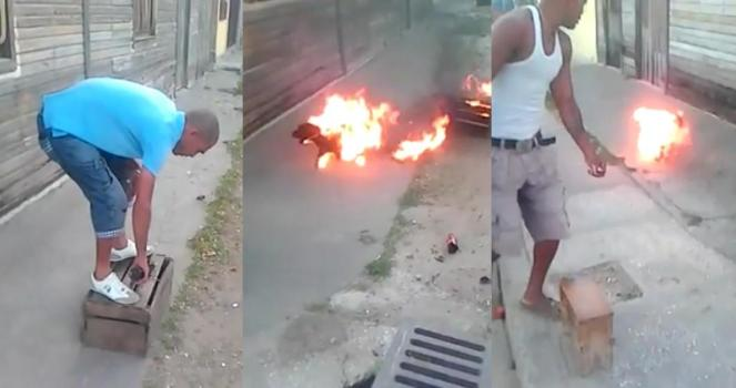 Bruciato e torturato un cucciolo, vogliamo la giustizia!