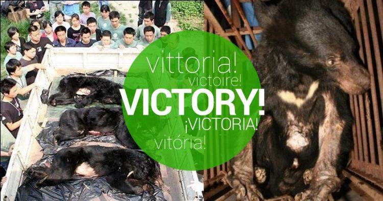 Vietnamese Government decided to end bear bile farming!