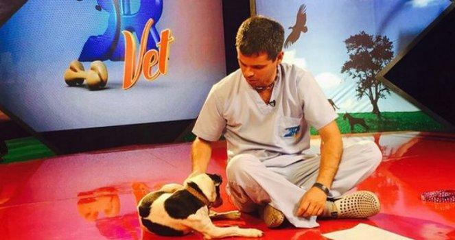 Television program to give news about animals: adoptable, abandoned and requests for help