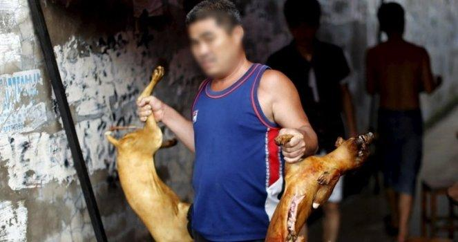 Stop the slaughter of the dog meat festival in China
